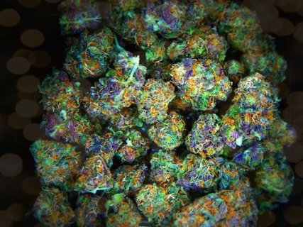 Buy Marijuana Seeds Safely